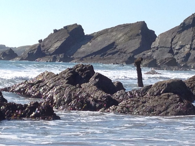 A bit of a wrecked boat poking out of the sea surrounded by rocks